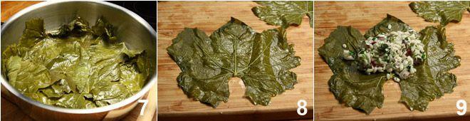 Involtini in foglie di vite