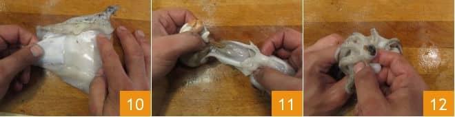 Come pulire le seppie