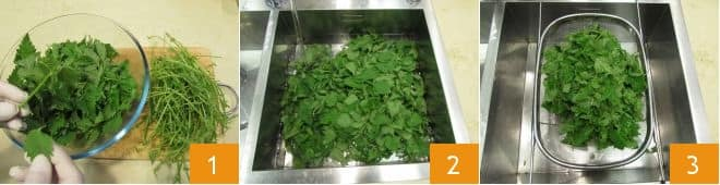 Lasagne con ricotta e ortiche