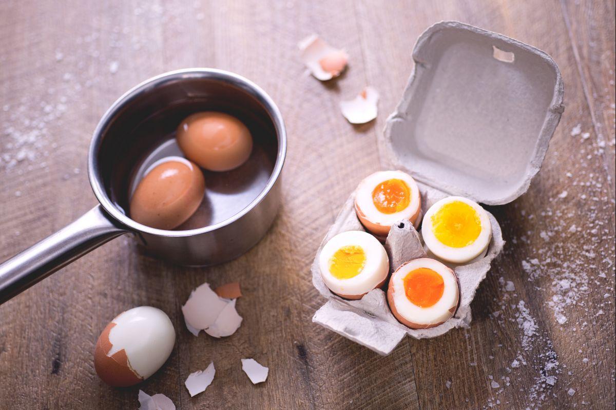 Come cucinare le uova le ricette di giallozafferano for Cucinare uova sode